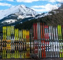 Ski Bild